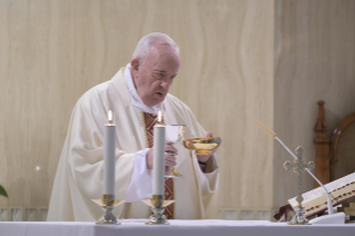 "9-Holy Mass presided over by Pope Francis at the Casa Santa Marta in the Vatican: ""Jesus is our pilgrim companion"""
