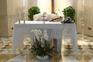 "0-Holy Mass presided over by Pope Francis at the Casa Santa Marta in the Vatican: ""Attitudes that prevent us from knowing Christ"""