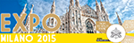 PARTICIPATION OF THE HOLY SEE AT EXPO MILAN 2015